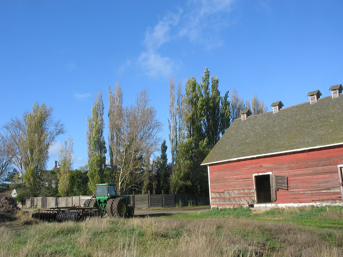 Central Whidbey Farm